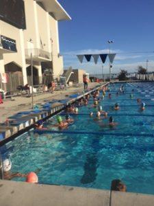 Sheila Taormina Swim Clinic
