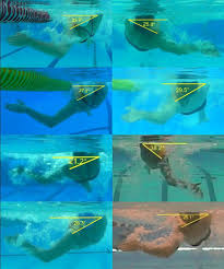 Backstroke Rotation Angles